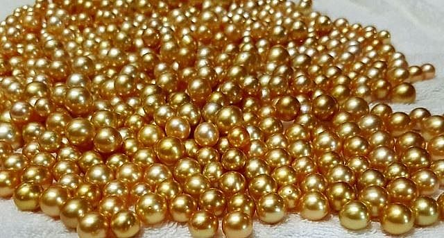 Lost Golden South Sea Pearl 001